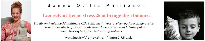 NO-stress-banner.jpg