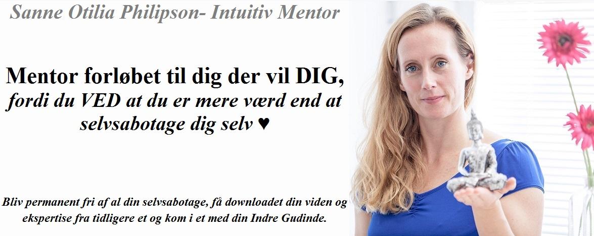 banner-mentorforl_b.jpg