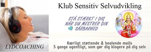 KlubSensitivUdvikling-BannerNOV2016xx-large.jpg