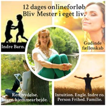 12-dages-online-medium.png