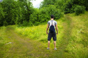 Hiker in woods facing choice of two paths
