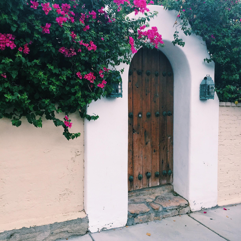 Palm Springs, Alexandra Harbushka