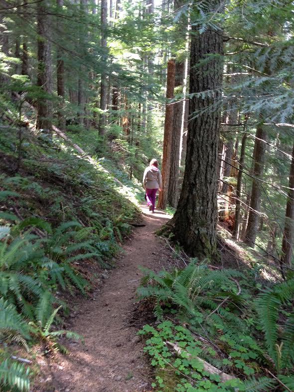 Gå deg kreativ i skogen