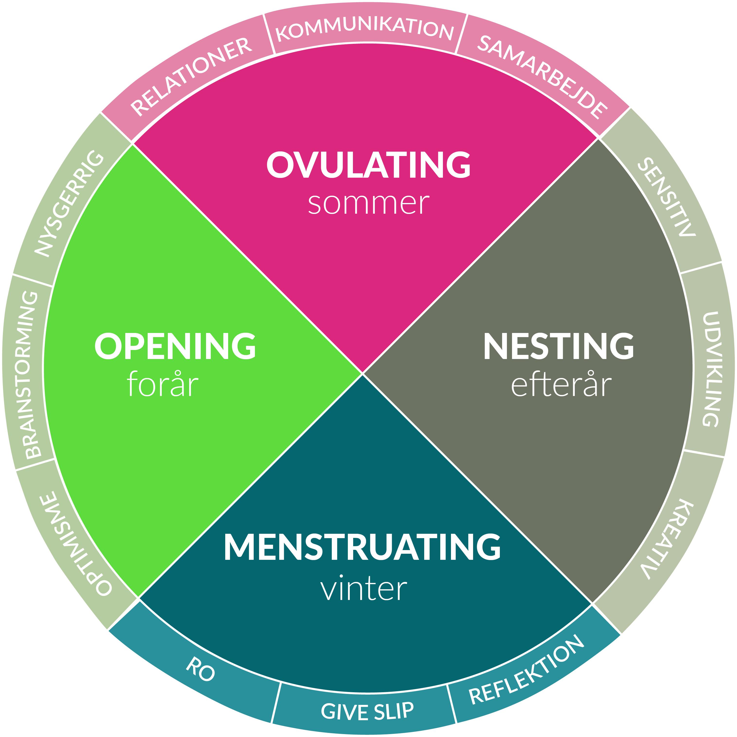 MOON model menstruationscyklus menstruation årstider laura grubb lauragrubb de fire faser kvinde kend din cyklus p-pille stop