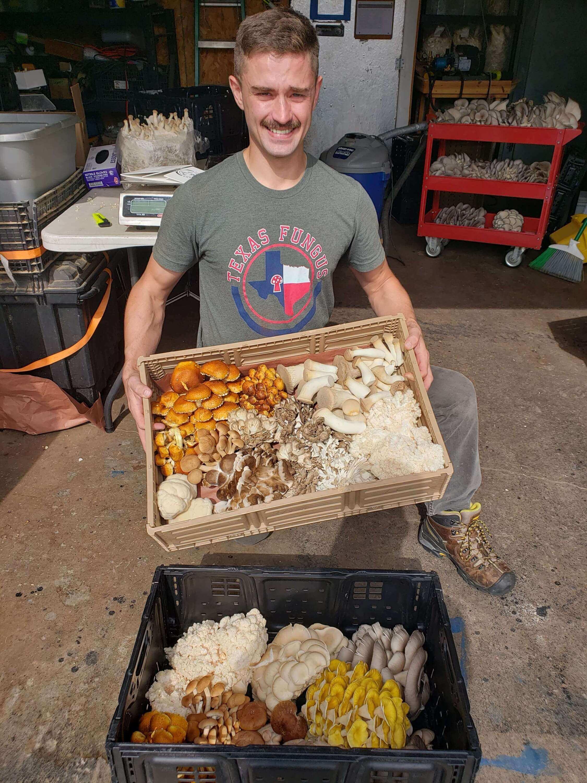 Texas Fungus, Jordan Jent holding Mushroom Harvest