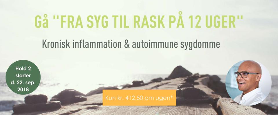 FRA SYG TIL RASK PÅ 12 UGER - kronisk inflammation og autoimmune sygdomme