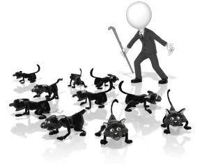 Pushing yourself and forever pulling others towards your goal, is like herding cats. Frantic, chaotic and essentially, useless