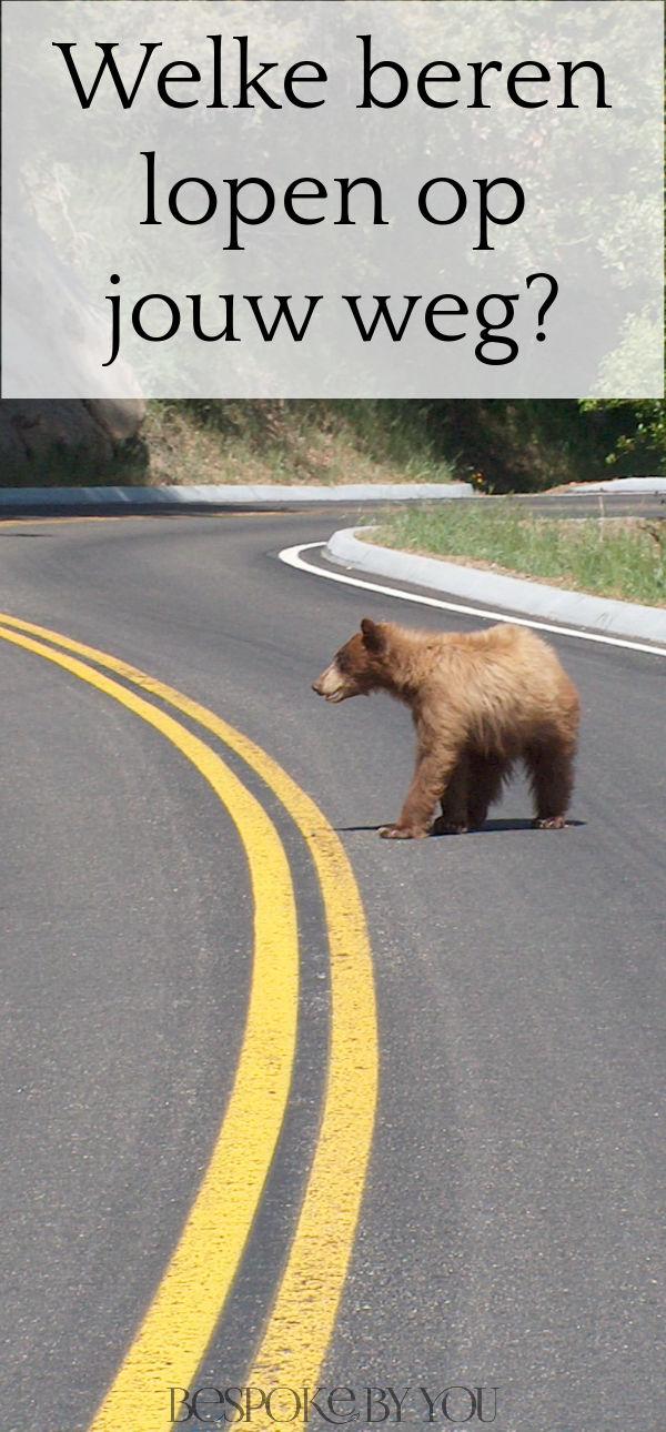 Pak de beren op je weg aan