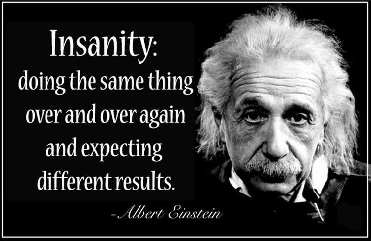 Einstein Insanity Wise and Wealthy Workshop
