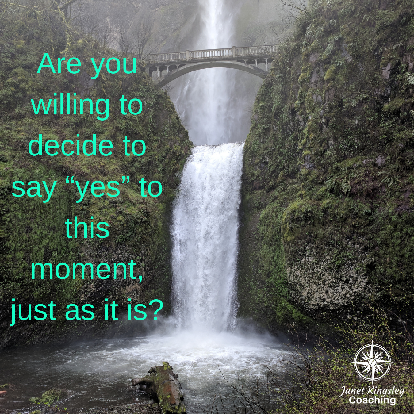 Say Yes in this moment