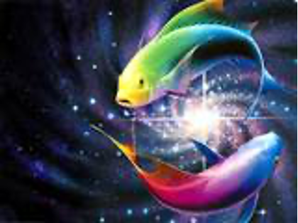 colorful pisces fish image