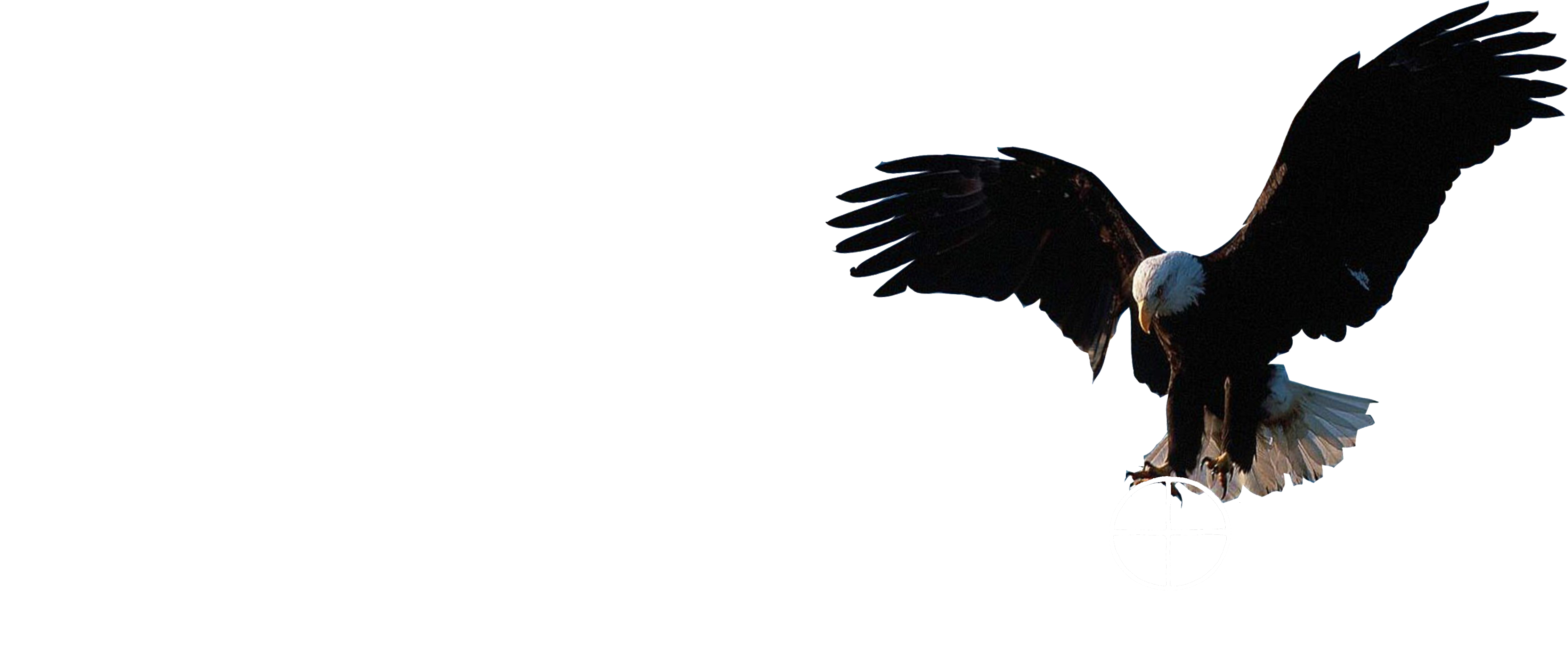 Eagleroad logo