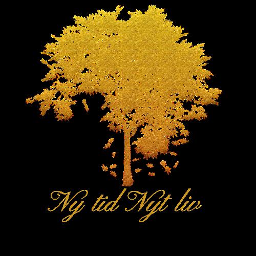 Ny Tid Nyt Liv logo